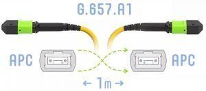 SNR-PC-MPO/APC-FF-SM-12F-A-1m - Оптический патчкорд MPO/APC - MPO/APC, FF (Female / Female), SM (G.657.A1), 12 волокон купить в Казани Оптический разъем MPO (Multi-fiber push-on) является разумной альтернативой для кабельной инфрастру