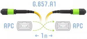 SNR-PC-MPO/APC-FF-SM-24F-A-1m - Оптический патчкорд MPO/APC - MPO/APC, FF (Female / Female), SM (G.657.A1), 24 волокна купить в Казани Оптический разъем MPO (Multi-fiber push-on) является разумной альтернативой для кабельной инфрастру